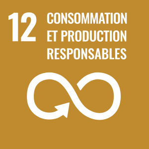 ODD 12 conssomation et production responsables